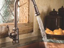 Rubbed Bronze Kitchen Faucets by Sink U0026 Faucet Awesome Kitchen Faucet Sprayer Design Ideas Delta