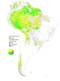 Regions Of South America Map by Conservation Ecology Global Scale Patterns Of Forest Fragmentation