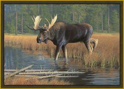 Moose Area Rugs Moose Area Rug