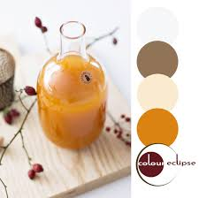 orange spice color pumpkin spice syrup inspired color palette autumn color inspiration