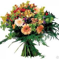 cut flowers mixed cut flowers international the complete range