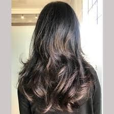 true hair barletta brown true brown hair color for maximum gray coverage