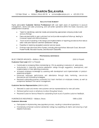 Resume Objective Example For Customer Service by Customer Service Summary For Resume Objective Template Online