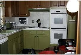 avocado green kitchen cabinets avocado green kitchen cabinets ignaciozori me
