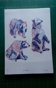 25 drawings bears ideas disney pencil