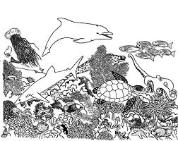 99 ideas coral reef coloring sheet on spectaxmas download