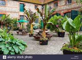 Tropical Plants For Garden - a courtyard garden with containers of exotic tropical plants in