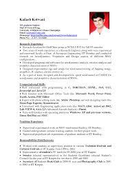 exle of resume experience resume exles venturecapitalupdate