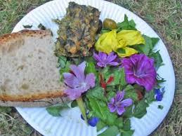 cuisine plantes sauvages fête des simples rencontre nationale des producteurs de plantes