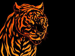 tiger image wallpapers group 86