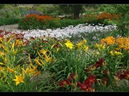 how to start a perennial flower garden youtube