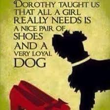 words of wisdom for the happy happy sunday words of wisdom as part of our paws 4 a cause