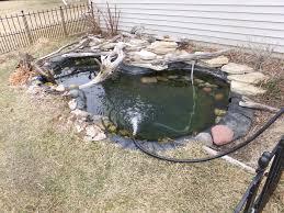 image gallery huge turtle pond