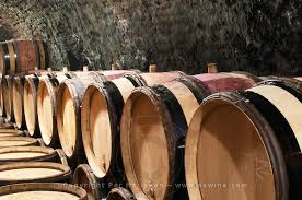 Burgundy Wine Cellar - burgundian wine cellars and old barrels have a certain charm