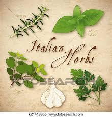 sarriette cuisine banque d illustrations cuisine italienne herbes k21418855