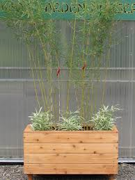 Great Patios Bamboo Planters