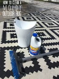 How To Clean An Outdoor Rug Clean A Moldy Rug Cleaning Tips