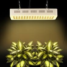 Flower Light Bulbs - compare prices on flower light bulbs online shopping buy low
