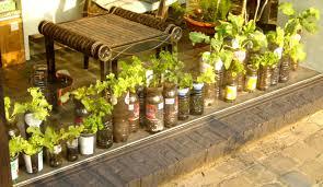 kitchen gardening ideas great ideas for container gardening willem container gardening