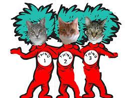 happy birthday dr seuss happy birthday dr seuss twospoiledcats