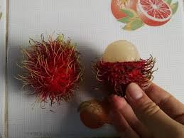 lychee fruit inside the best 9 exotic fruits to try at a thai market wandering educators