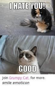 Angry Cat Meme Good - 25 best memes about cat cat memes
