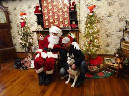 pooches pose with santa for westlake historical society holiday