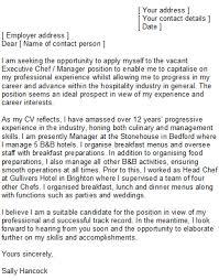 100 application letter chef best 25 resignation letter