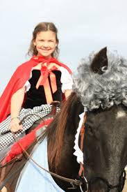 wolf halloween costumes 11 best halloween horse and rider costume images on pinterest