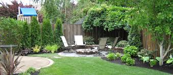 backyard cheap privacy fencing ideas shrubs to plant along fence