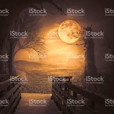 halloween backdrop spooky woods with moonligt as halloween backdrop scene stock photo