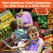 gmo inside how american food companies go gmo free in a gmo world