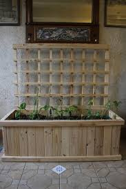 home made indoor pallet wood trellis planter part 2 the trellis