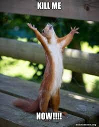Kill Me Meme - kill me now happy squirrel make a meme