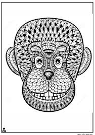 get this monkey coloring pages for adults 31679