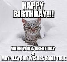 Happy Birthday Cat Memes - happy birthday cat in snow meme on memegen