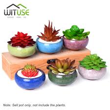 popular succulents vase buy cheap succulents vase lots from china