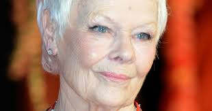 judi dench hairstyle front and back of head awkward typo means dame judi dench is nominated for very bizarre
