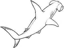 cartoon hammerhead shark free download clip art free clip art