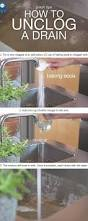 How Unclog A Kitchen Sink How To Unclog A Double Sink Sinks Cleaning And Unclog Sink