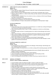 sales and marketing resume resume format for sales and marketing sales marketing resume