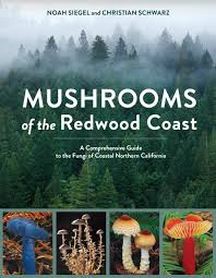 218 best native plants images on p amazon com plants biological sciences books trees flowers