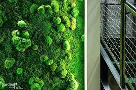 garden on the wall vertical balcony garden idea colorful planters