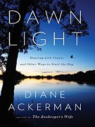 Light And Day Moon By Whale Light And Other Adventures Among Bats Penguins