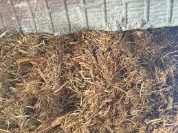 Landscaping Peachtree City Ga by Garden And Landscape Mulch Newnan Peachtree City Sharpsburg
