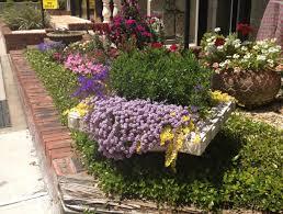 Flower Shops by Flower Shops In Winter Haven Fl Sheilahight Decorations