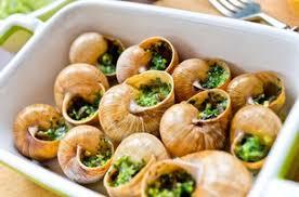 cuisiner des escargots cuisson des escargots femmezine fr