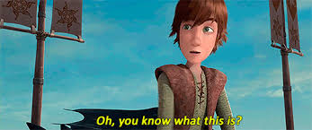 Berk Meme - mine how to train your dragon dragons hiccup riders of berk