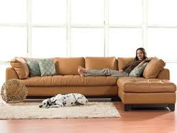 Small Sectionals Sofas by 118 Best Sectional Sofas Images On Pinterest Diapers Small
