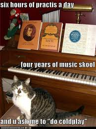 Cat Playing Piano Meme - lolcats coldplay lol at funny cat memes funny cat pictures